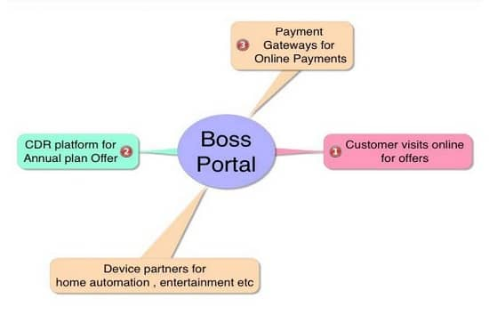 How does Online BOSS Portal works?