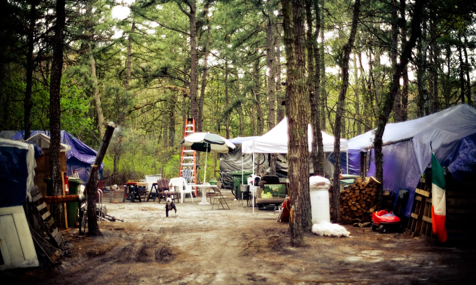 10/29/2014 & Cinemablographer: The Urban Planet and Tent Town USA