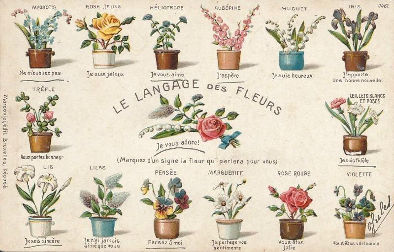 Le Langage des Fleurs. El lenguaje de las flores