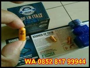 Harga Hammer Of Thor Jakarta