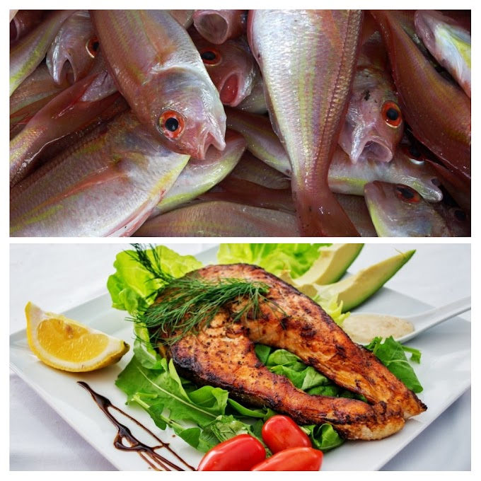 Fish and it's nutritional value.
