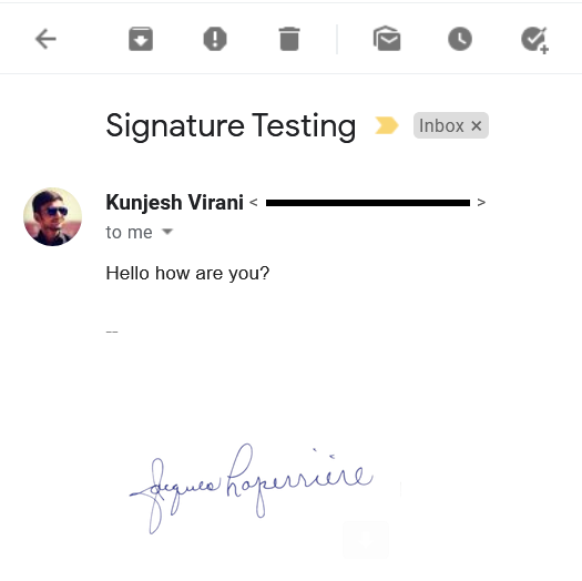 Preview of the signature in the sent mail.