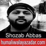 https://www.humaliwalyazadar.com/2018/09/shozab-abbas-nohay-2019.html