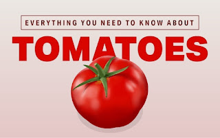 Are tomatoes good for dieting