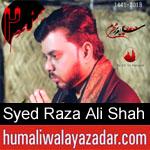 https://humaliwalaazadar.blogspot.com/2019/08/syed-raza-ali-shah-bukhari-nohay-2020.html
