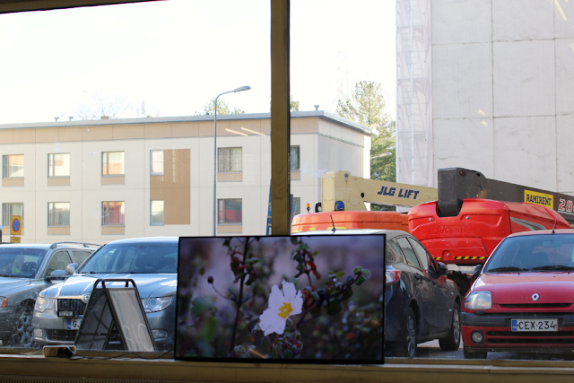 Image of a video work Necropolis by Trestalkers. A video screen leans to a window, with cars parked outside and residential flats behind them, and an image of a flower on the screen.