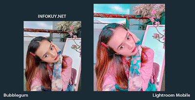 Tutorial Edit Foto Bubblegum Lightroom