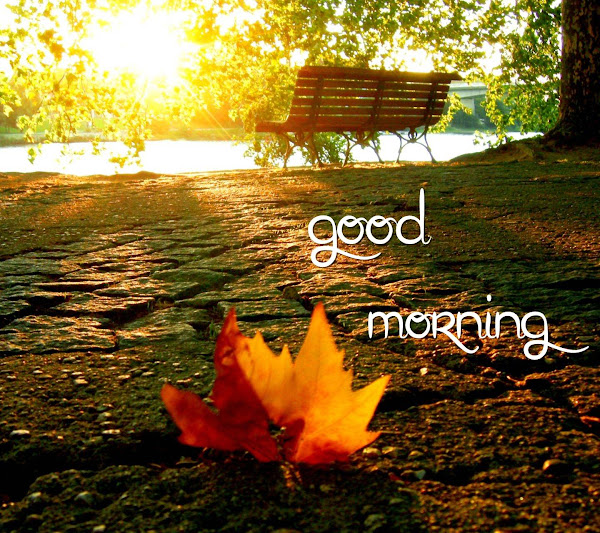 20 Best Love Good Morning SMS 2021