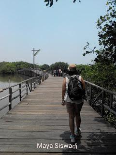 Hutan Mangrove Jakarta