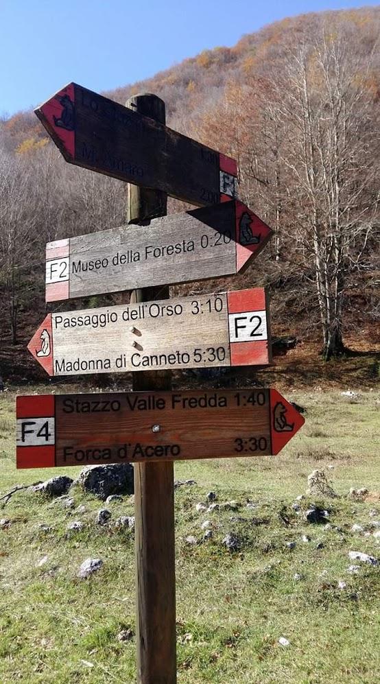 Segnavia al trivio della Grotta Val Fondillo