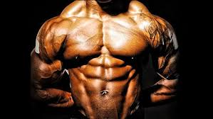 what to take for bodybuilder