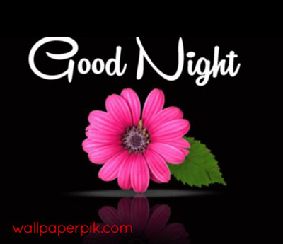 cute good night images hd photos