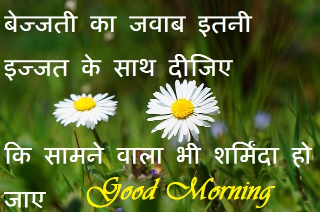 beautiful quote for good morning in hindi