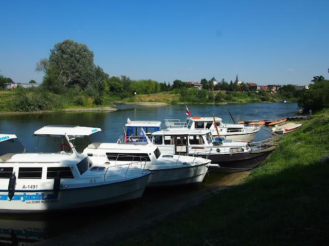 Cumowisko dla łodzi na Warcie, 30km od Poznania. W tle ujście Wełny do Warty.