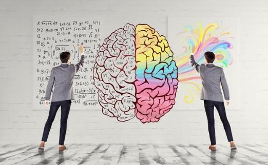 Apa Perbedaan Antara Otak Kanan dan Otak Kiri? Ini Penjelasannya