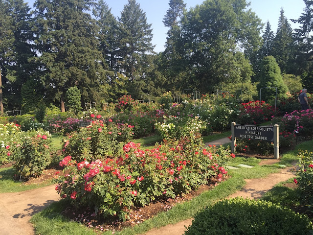 International Rose Test Garden in Portland, Oregon is the oldest in the USA.