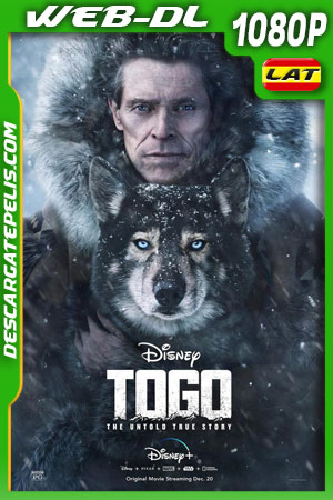 Togo (2019) 1080p WEB-DL Latino – Ingles