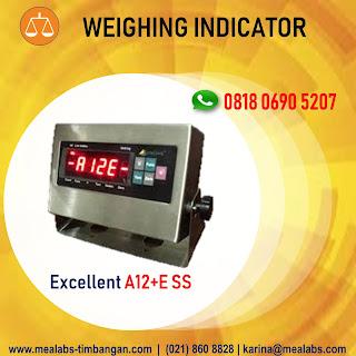 Indikator A12+E SS