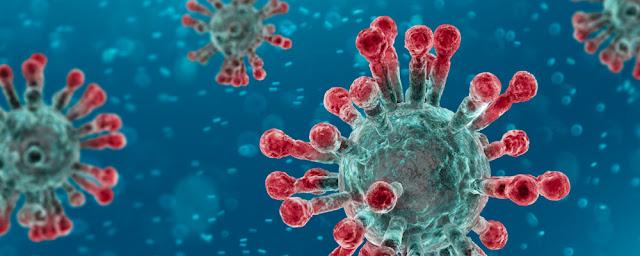 Coronavirus Newsbites
