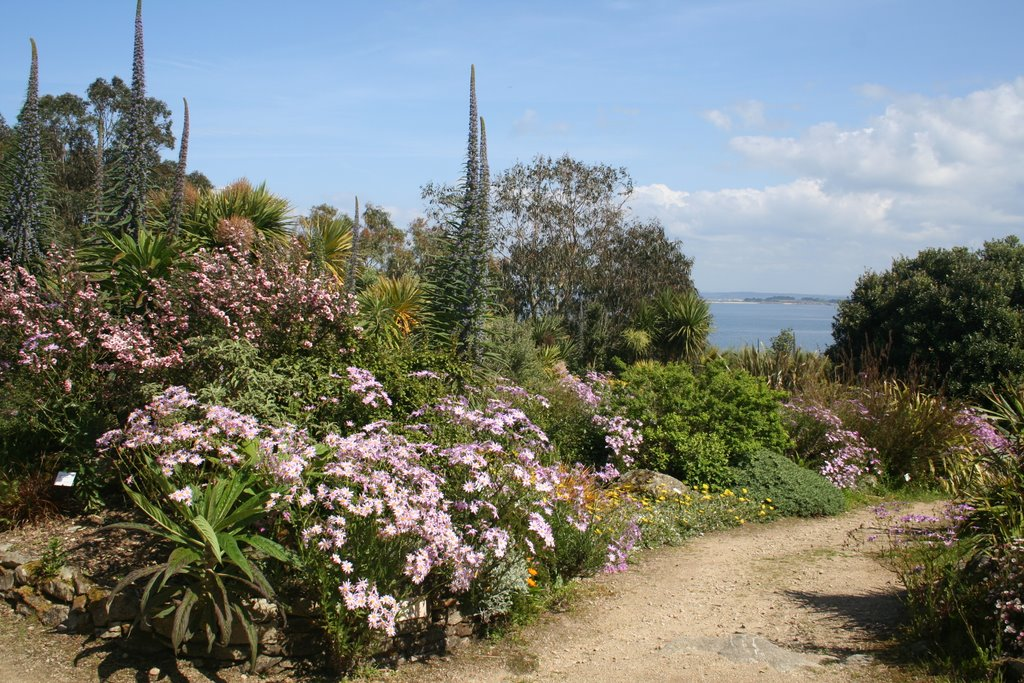 jardin exotique de Roscoff en Bretagne