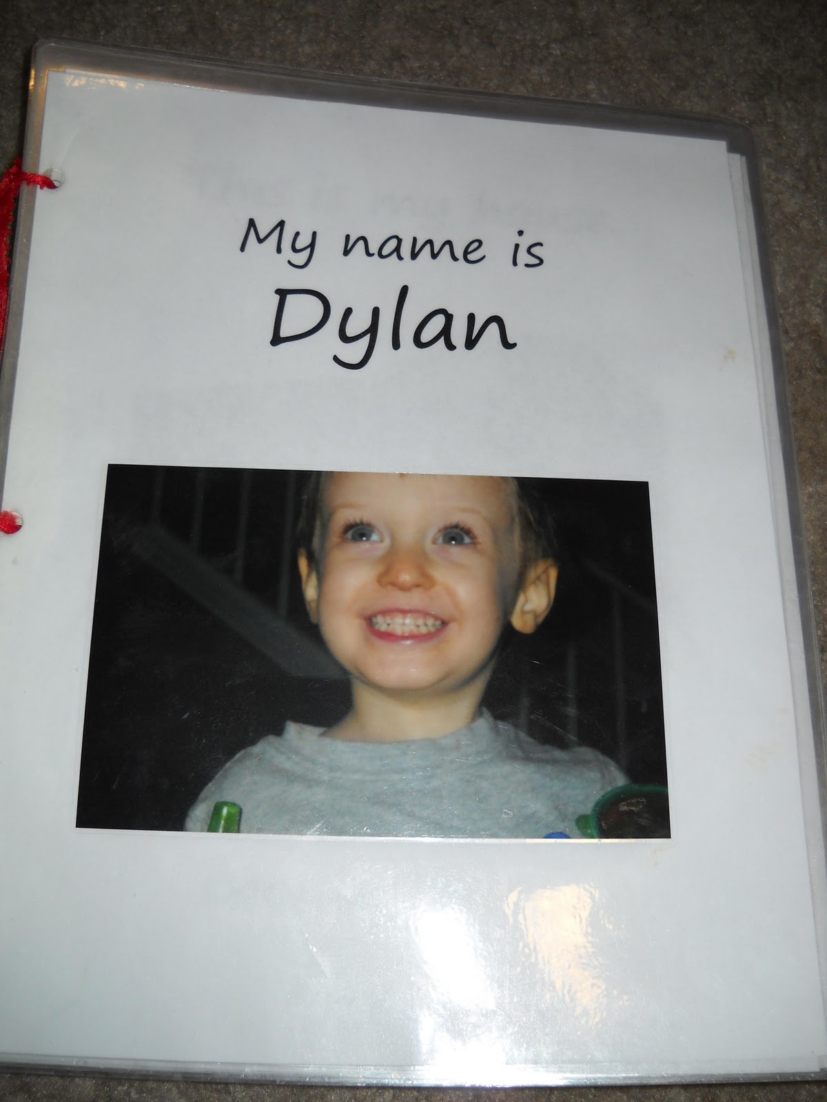 Dylan S Autism Recovery All About Me Activities