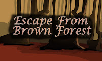 Top10NewGames - Top10 Escape From Brown Forest