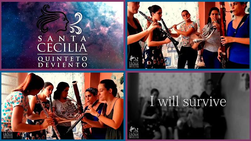 Quinteto de Viento Santa Cecilia - ¨I will survive¨ - Videoclip - Director: Daniel Matos. portal Del Vídeo Clip Cubano. Música cubana. Cuba.