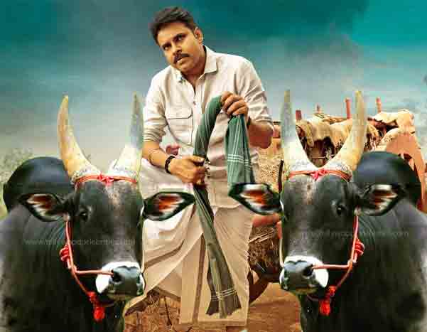 ( After Mahesh ), Pawan Tweets On Jallikattu
