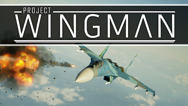 Project Wingman Review - An Animated Flight Simulator
