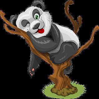 Panda odpoczywa na drzewie