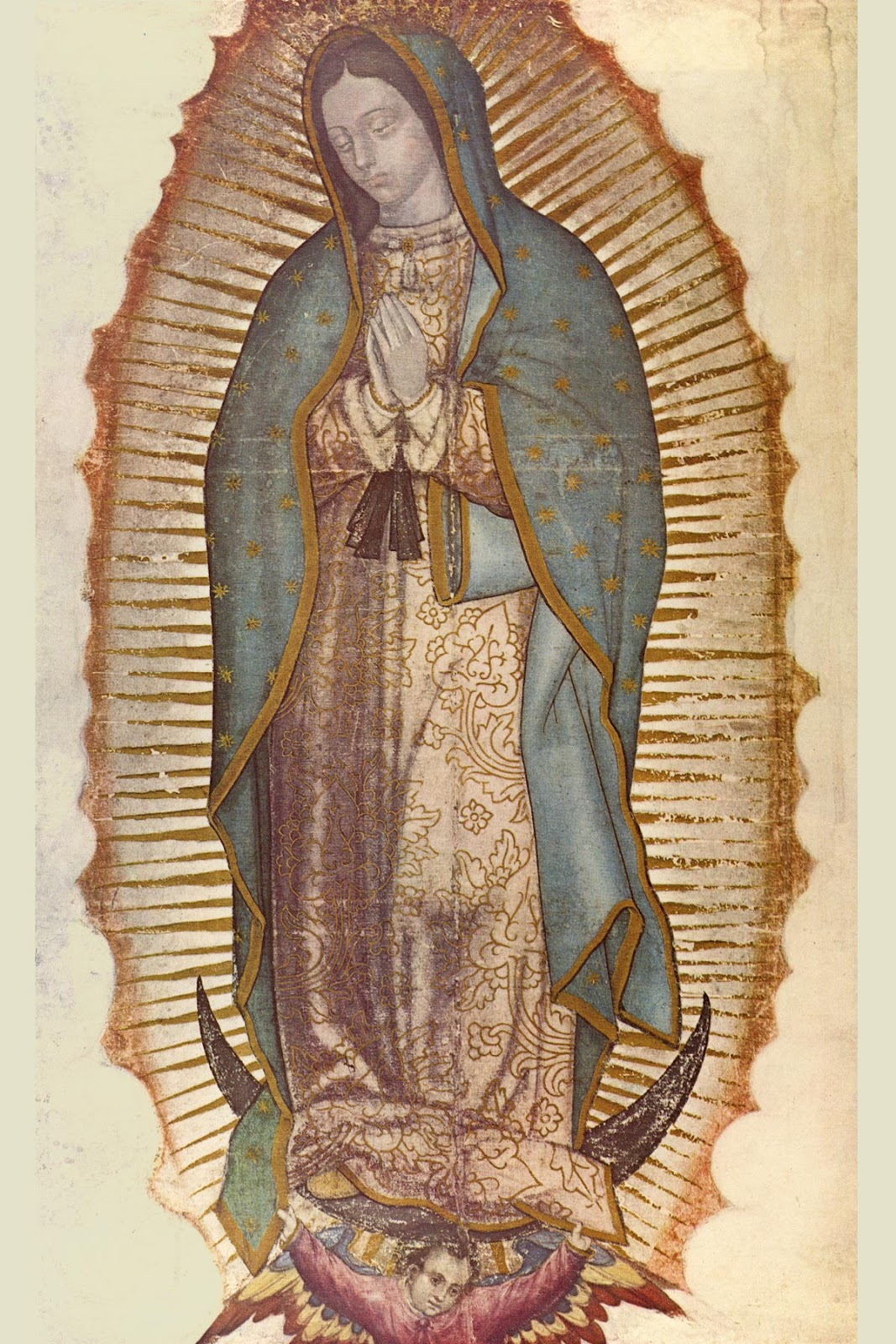 Infallible Catholic Our Lady Of Guadalupe
