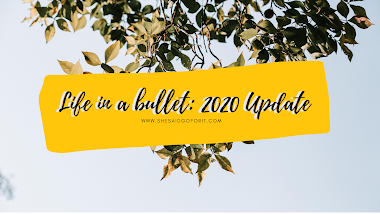 Life in a bullet: 2020 Update (Fallen people, Insurance, Financial Planner, iPad, and more)