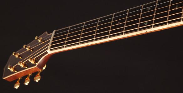 Guitar Takamine EF75M-TT