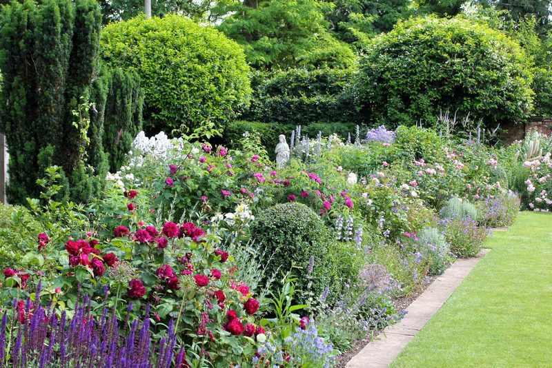 frontera mixta de herbaceas de verano