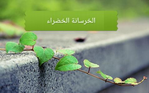 ما هي مميزات وعيوب الخرسانة الخضراء؟ وما هي علاقتها بالاستدامة؟
