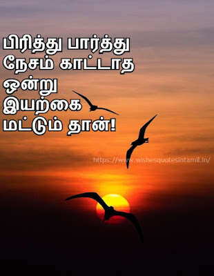 kavithaigal In Tamil