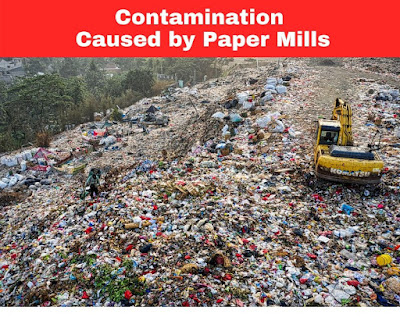 Contamination Caused by Paper Mills