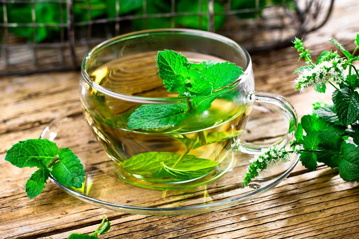 12 benefícios que a hortelã pode trazer para sua saúde