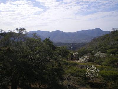 Reserva de la Biosfera Sierra de Huautla REBIOSH