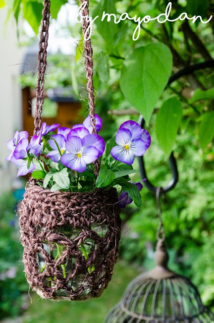 Hornveilchen in der Vase