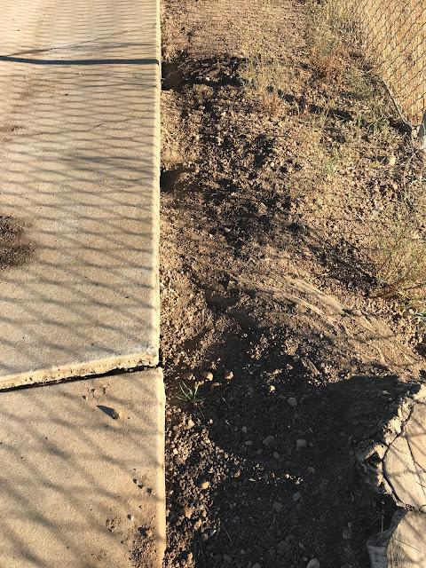 Burrow Blocker Ground Squirrel Control