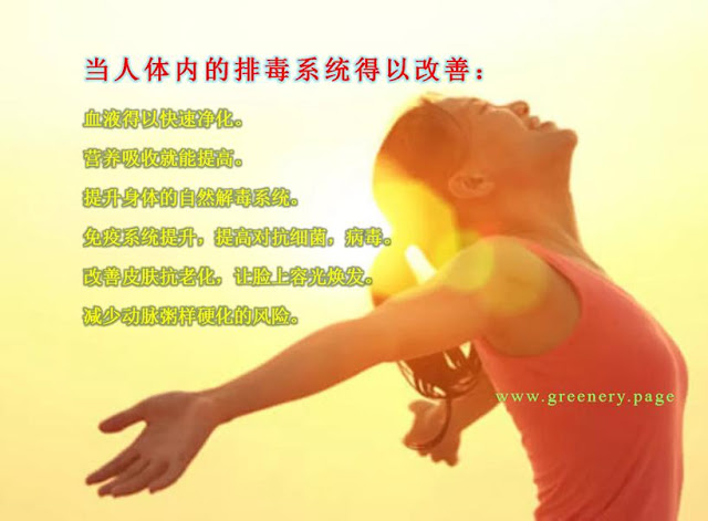 UF innercare  改善身体