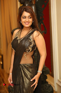 Actress Nikitha Pictures in Saree at Apartment Movie Audio Launch  0018.JPG