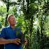 Prefeitura realizará plantio simbólico de sumaumeiras e comemora quase 40 mil novas árvores do 'Arboriza Manaus'