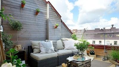 Panduan Pemula untuk Berkebun di Atap (Roof Top Gardening)