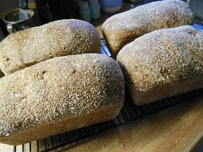 Our Dave's Killer Bread Style Super Seeded Daily Bread.