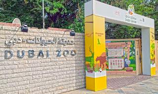 Dubai Zoo Kebun Binatang di Dubai Uni Emirat Arab