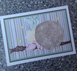 Eine schnelle Karte für jeden Anlass, gestaltet mit dem Stempelset KRAFT DER NATUR und den Designer Papier POESIE DER NATUR #handmadewithlove #Stampin' Up