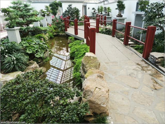 Puente en el Garden of Weedlessness del Jardín Botánico de Montreal