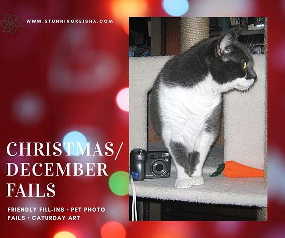Christmas/December Fails